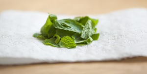 Mint for Smoothie